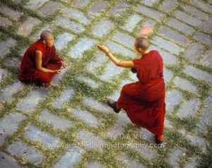 DEBATE IN THE COURTYARD, A TRADITIONAL FORM OF TEACHING, DHARAMSALA, INDIA