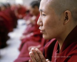TIBETAN NUNS IN PRAYER, DHARAMSALA, INDIA