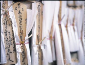 PRAYER STICKS, CENTRAL TEMPLE, NARA