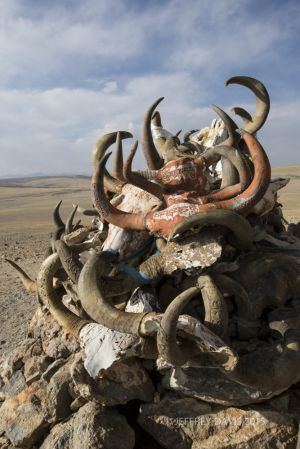 PROTECTIVE HORNS, HILLTOP SHRINE, GUGE REGION, TIBET