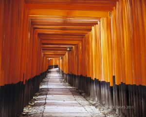 PATH OF PROMISE, FUSHIMI INARI SHRINE, KYOTO, JAPAN